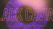 Black Caviar and Yash feat Alle The Dreamer - Bohemian Like You